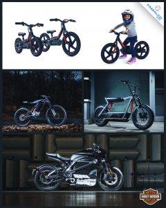 Harley-Davidson Malta E-bikes